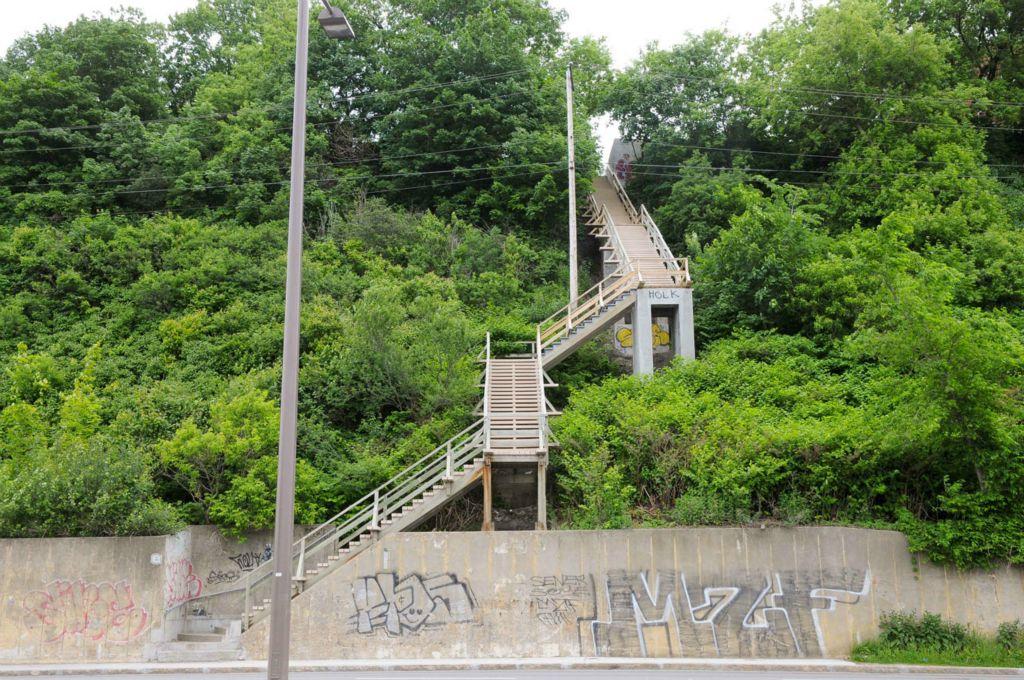 Photo de l'escalier, offerte sur le site de la Ville : la falaise est remplie d'arbres et arbustes très verts et touffus. Escalier en bois, deux places de large.