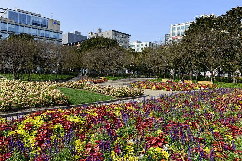 Ville de qu bec saint roch points of interest - Maison jardin senior living community reims ...