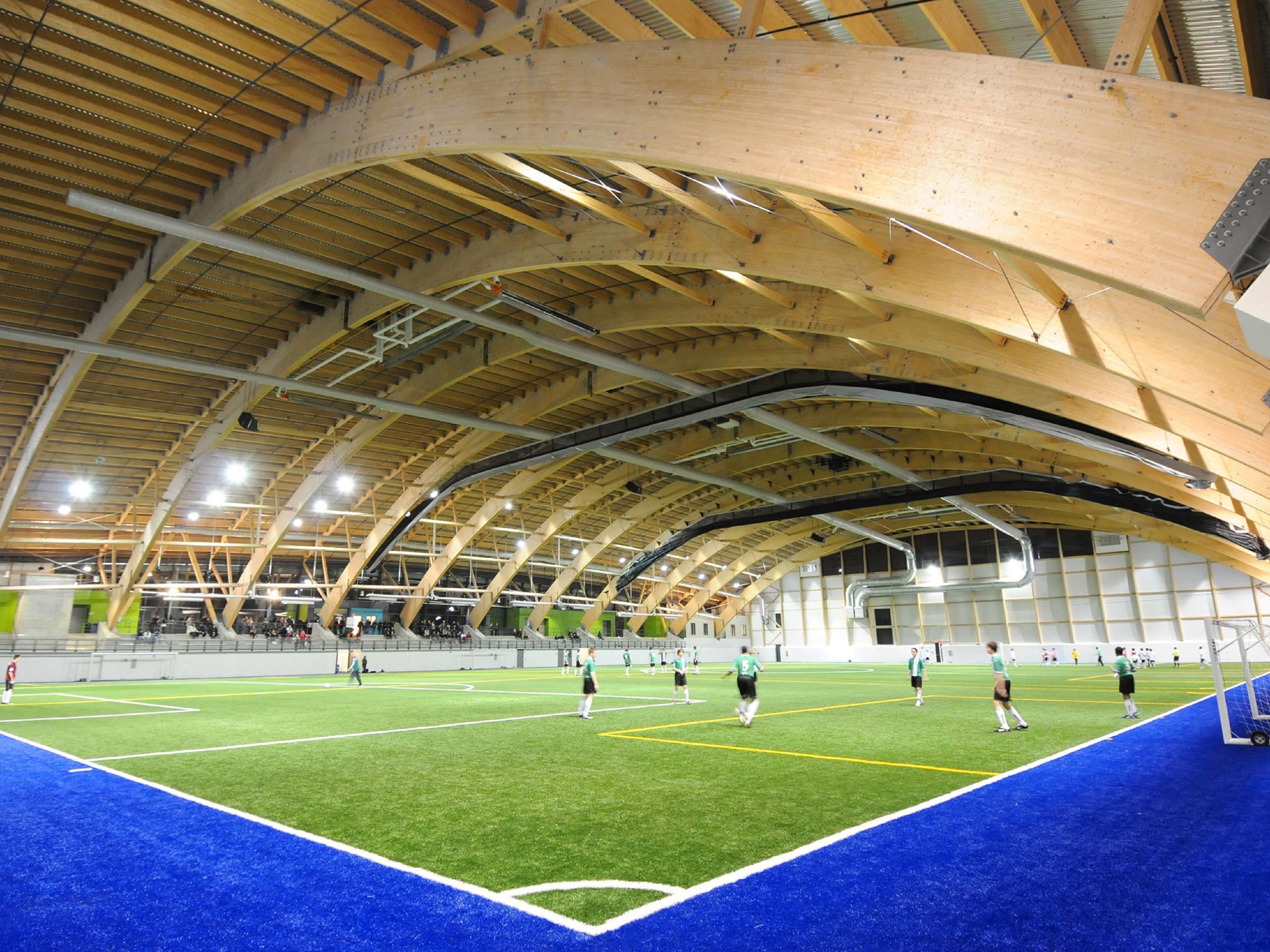 Terrains et stades de soccer for Buisson synthetique